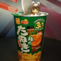 shinki20110727_04.jpg