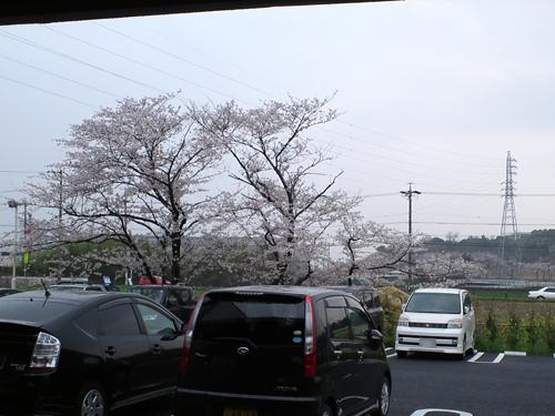 元町カフェ3-31-1