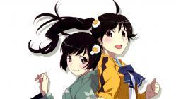 moe 201461 araragi_karen araragi_tsukihi bakemonogatari nisemonogatari tagme