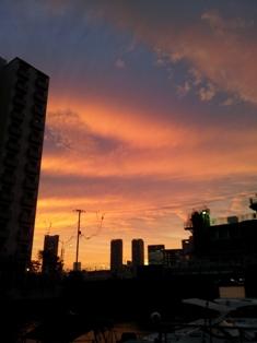2011110602.jpg