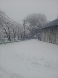 2012030102.jpg