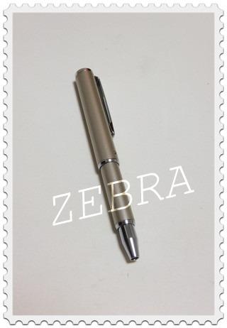 ゼブラペン1
