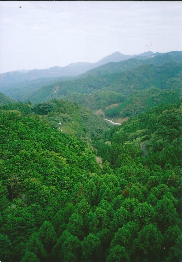 1大阪ー鹿児島 (72)