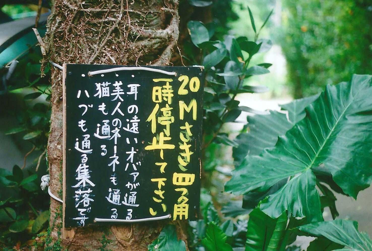 沖縄 (20)
