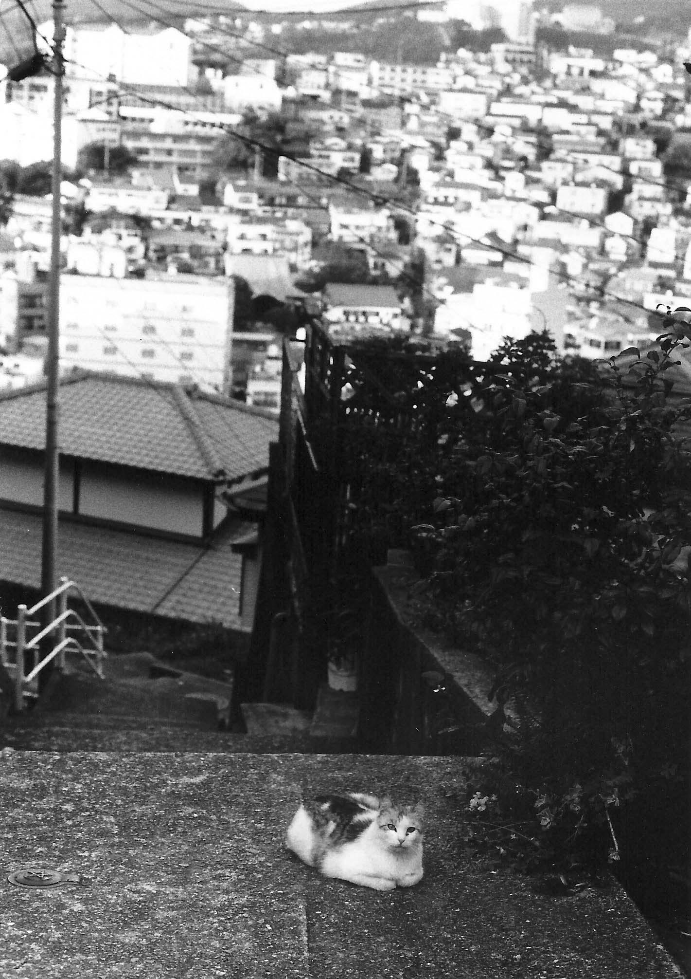 与論ー九州西側 (86)