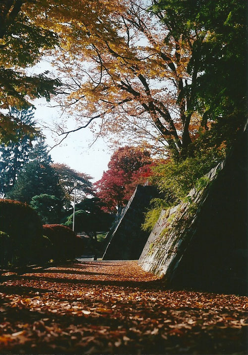青森ー大阪 (8)1