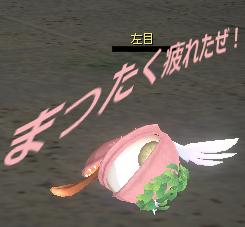 ピンクスエゾー乙