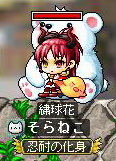 Maple120103_022808.jpg