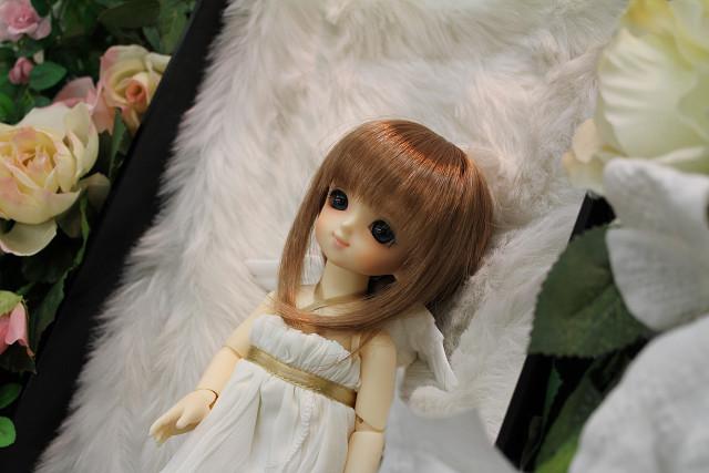 プロフ雪姫003