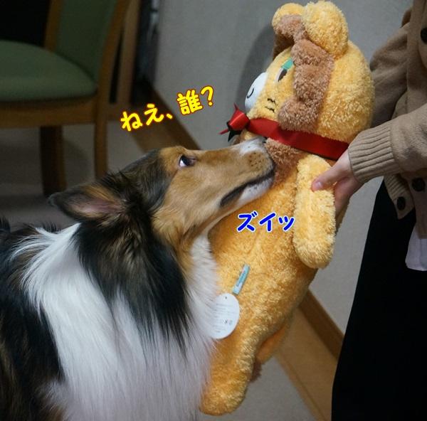 1-DSC01279.jpg