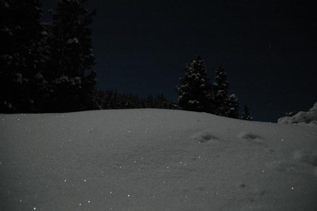 2014-01-14 (2)