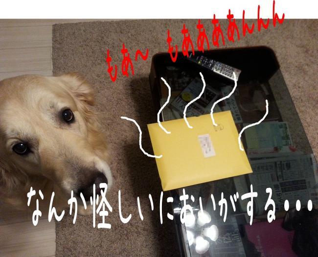 3_convert_20131223223837.jpg