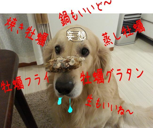 5_convert_20131223223923.jpg