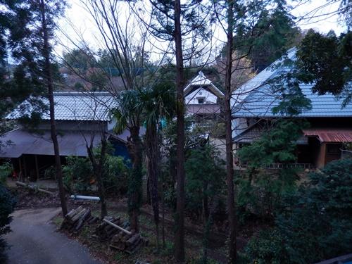 2013.12.14 屋根の清掃(渋柿もぎ) 005
