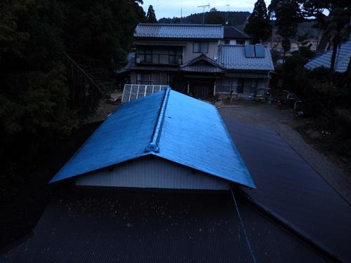 2013.12.14 屋根の清掃(渋柿もぎ) 001