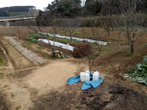 2014.1.1 耕作農地(伊藤農園) 054
