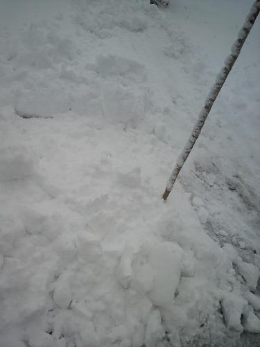 雪01773