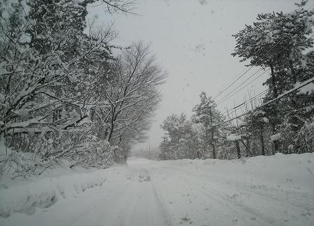 雪道904