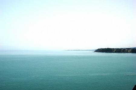 三崎公園2012春1391
