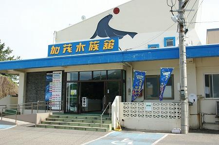 加茂水族館1557