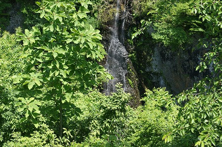 米の粉の滝1772