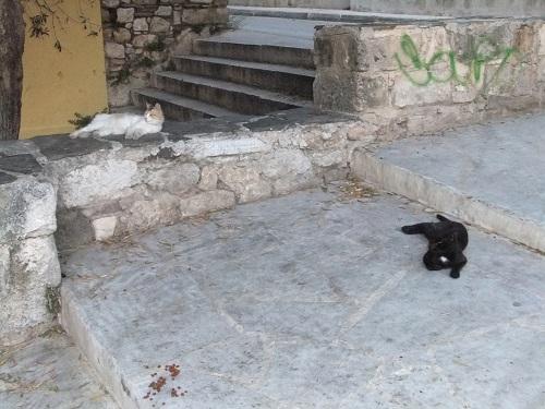 アテネ_アクロポリスの北で (2)