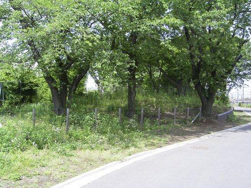 整備前の御嶽塚古墳