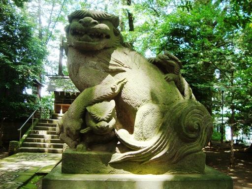 世田谷八幡宮狛犬