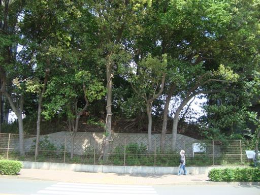 現在の経塚古墳