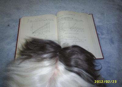 電波伝搬理論を勉強中の僕
