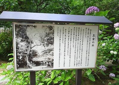 s-sutoku022.jpg