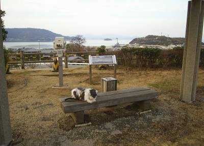 高松道津田サービスエリア(上り)1