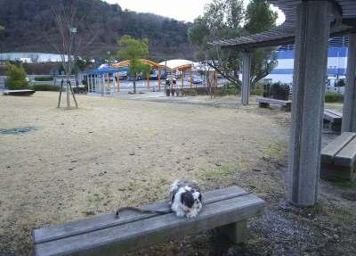 高松道津田サービスエリア(上り)3