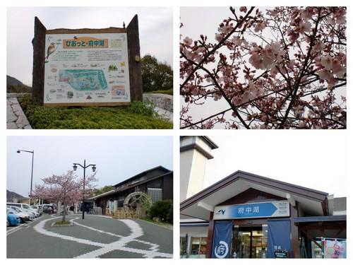 2011-04-03.jpg
