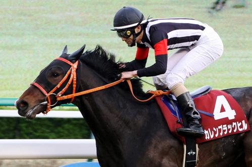 秋山「この馬は砂を使ったらすごいことになる」