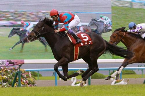 【競馬ネタ】ダービー馬なのに最優秀3歳獲れなかった馬