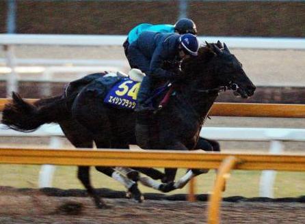 【速報】エイシンフラッシュ有馬記念回避