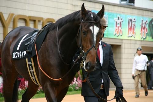 【競馬ネタ】来年の競馬界が絶望的な件