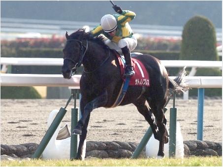 【朗報】サトノがついにG1馬を出す