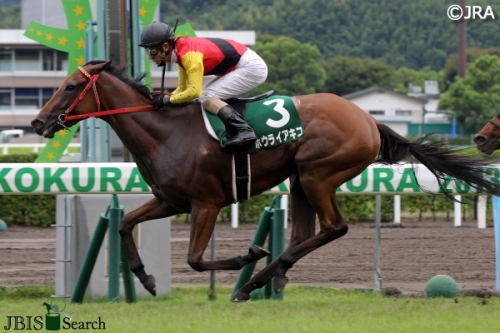 【競馬】桜花賞4着馬、ようやく帰厩