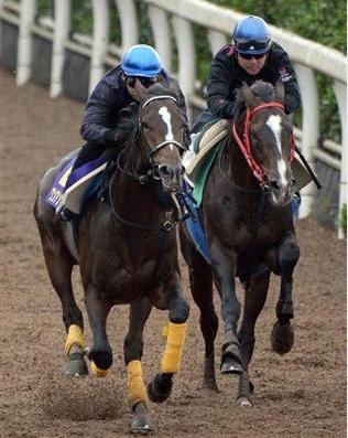【競馬】ダービー・菊花賞の2冠は40年出てない。後は分かるな?