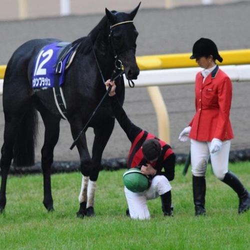 【競馬】リアルタイムの心に残るコメント