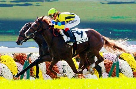 【競馬】池添が今年まだ重賞勝ってない件