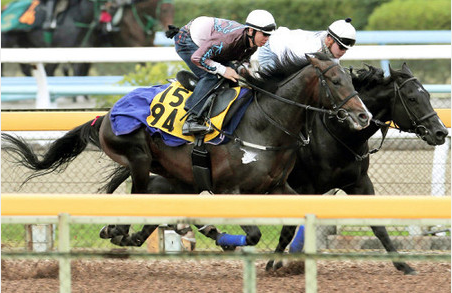 【競馬】第52回アルゼンチン共和国杯 GⅡ