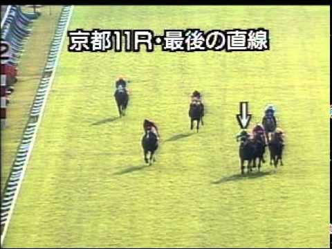 【競馬】自分が生観戦した中で自慢できるレース