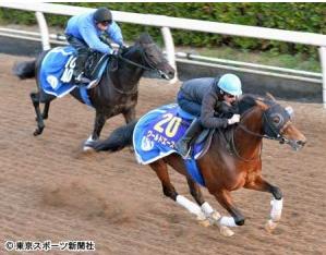 【有馬記念】ブドー騎手帰国【スミヨンか?!】