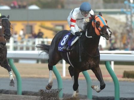 【競馬】チャンピオンズカップ反省会