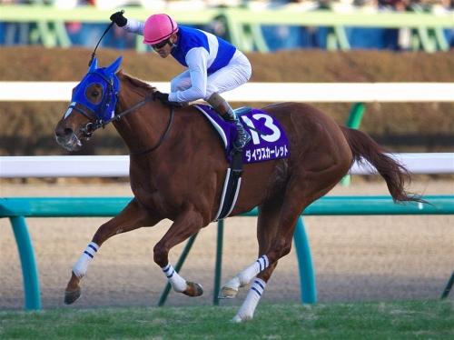 【競馬】近年の有馬で最も強い勝ち方をした馬は何か?