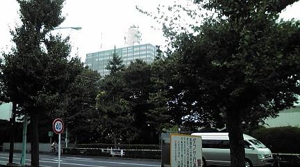 tokyo201112.jpg
