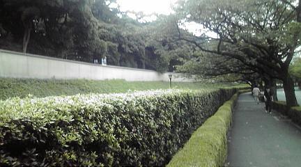 tokyo201134.jpg